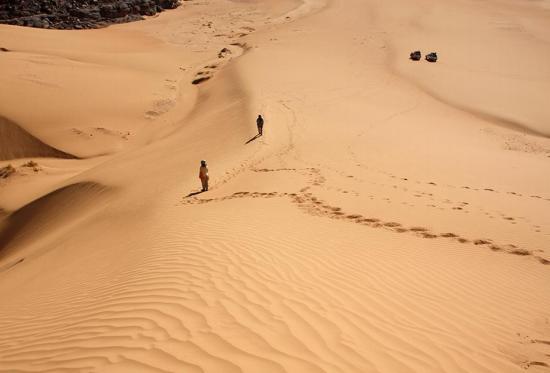 Desierto de Argelia