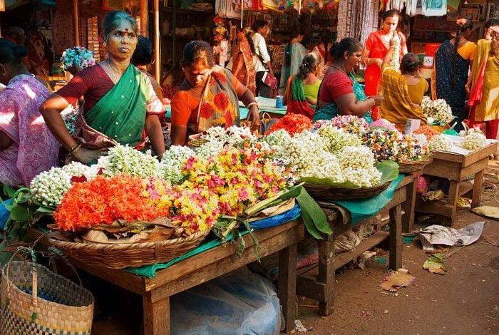 Descubrir Tours India
