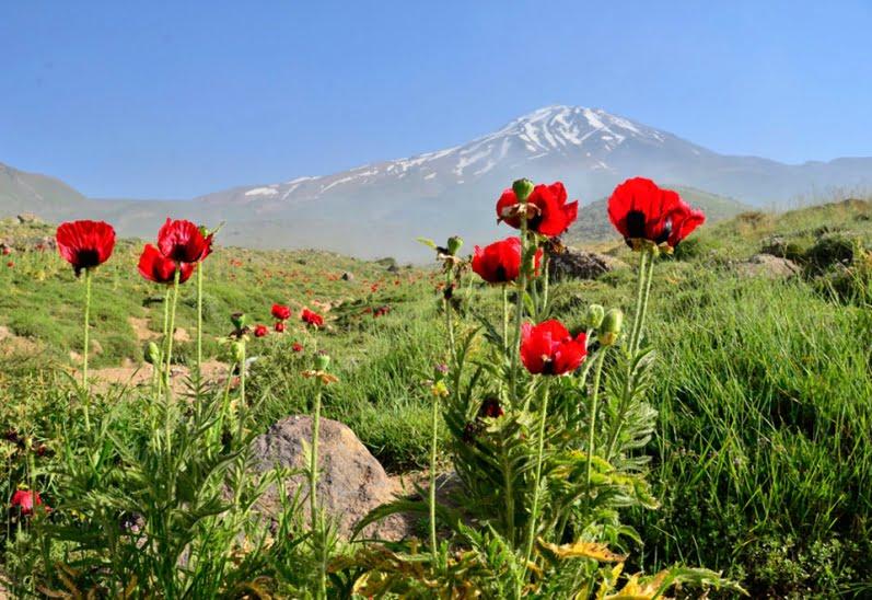 El monte Damavand