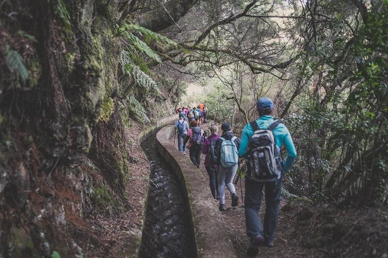 Senderos en la isla de La Palma