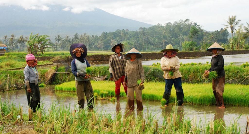 el-adat-minangkabau